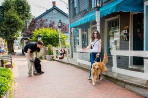 A woman & her golden retriever guide dog step down onto the sidewalk
