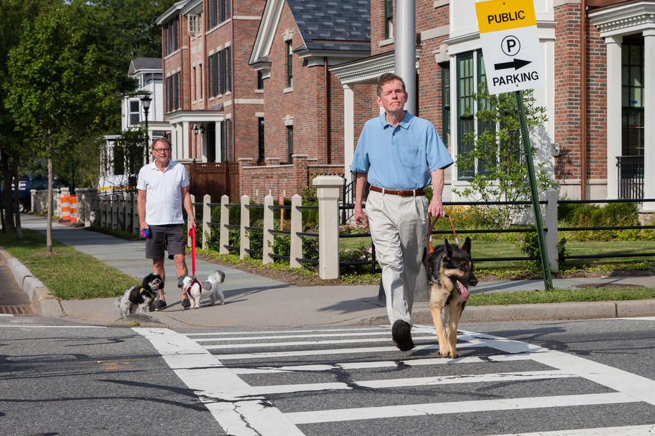 A man and his German shepherd guide dog walk across a street